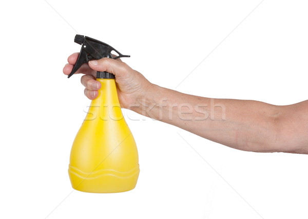 Sprayer in the hand of an old woman Stock photo © michaklootwijk