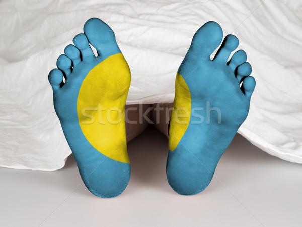フィート フラグ 寝 死 パラオ 女性 ストックフォト © michaklootwijk