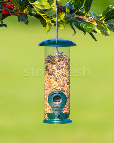 Bird feeder full of seeds Stock photo © michaklootwijk