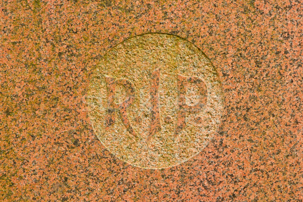 Carta grave velho mármore holandês árvore Foto stock © michaklootwijk