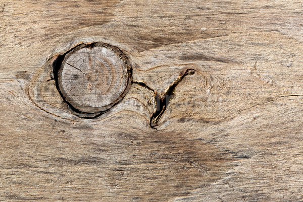 Eski ahşap büyük düğüm ahşap duvar arka plan Stok fotoğraf © michaklootwijk