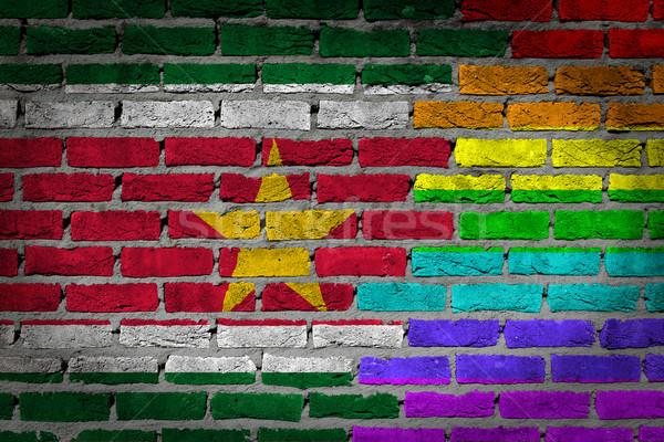 темно кирпичная стена правые Суринам текстуры флаг Сток-фото © michaklootwijk