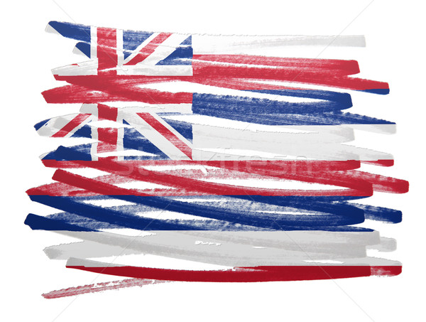 Vlag illustratie Hawaii pen business verf Stockfoto © michaklootwijk