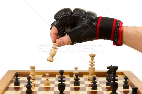 играет шахматам перчатки изолированный белый дизайна Сток-фото © michaklootwijk