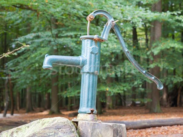 Hand Wasser pumpen verrostet vergessen Frühling Stock foto © michaklootwijk