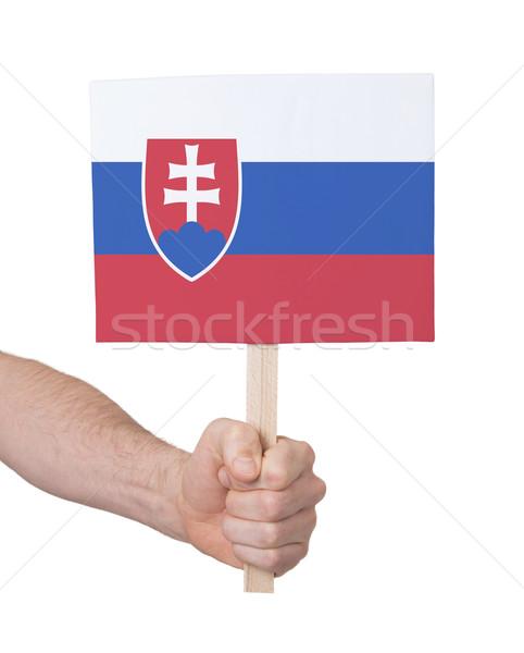 El küçük kart bayrak Slovakya Stok fotoğraf © michaklootwijk