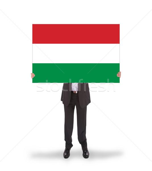 Lächelnd Geschäftsmann halten groß Karte Flagge Stock foto © michaklootwijk