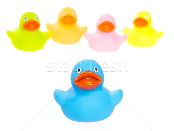 Rubber ducks isolated Stock photo © michaklootwijk