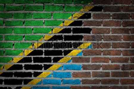 Dark brick wall - LGBT rights - Botswana Stock photo © michaklootwijk