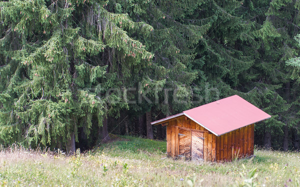Typical house in the Swiss alps Stock photo © michaklootwijk