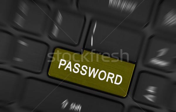 Text password button Stock photo © michaklootwijk