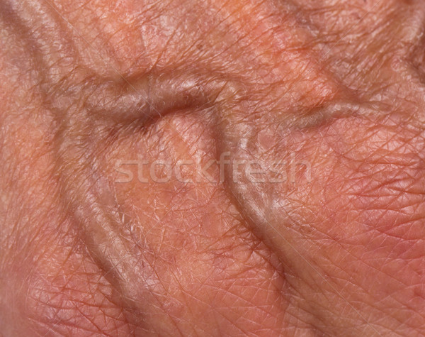Hand of an old woman Stock photo © michaklootwijk