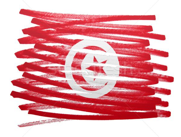 Bayrak örnek Tunus kalem iş boya Stok fotoğraf © michaklootwijk