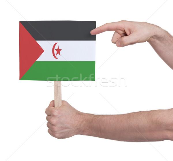 Hand holding small card - Flag of Western Sahara Stock photo © michaklootwijk