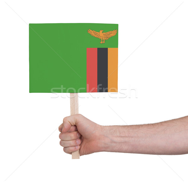Kéz tart kicsi kártya zászló Zambia Stock fotó © michaklootwijk
