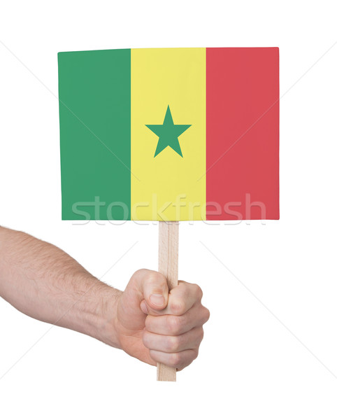 Hand holding small card - Flag of Senegal Stock photo © michaklootwijk