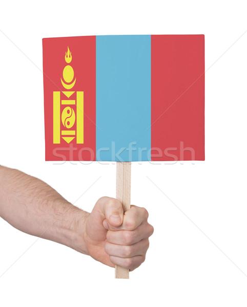 Kéz tart kicsi kártya zászló Mongólia Stock fotó © michaklootwijk