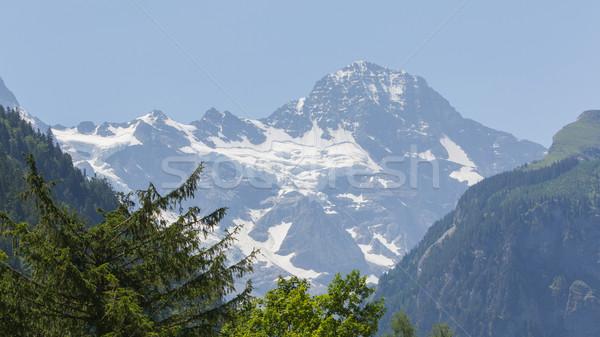 Charakteristisch Ansicht Alpen Bäume Berge Himmel Stock foto © michaklootwijk