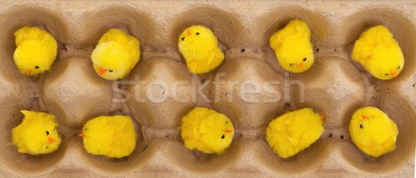 Paskalya civciv seçici odak bebek yumurta arka plan Stok fotoğraf © michaklootwijk