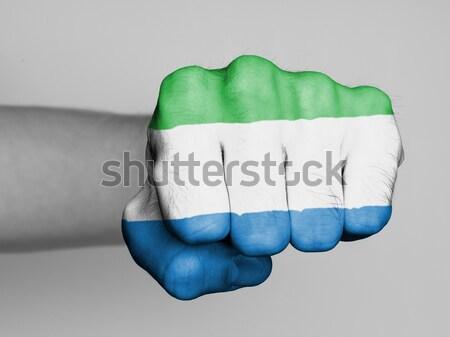 Görmek yumruk afiş Macaristan el Stok fotoğraf © michaklootwijk
