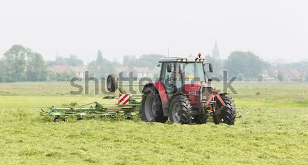 Farmer uses tractor to spread hay on the field Stock photo © michaklootwijk
