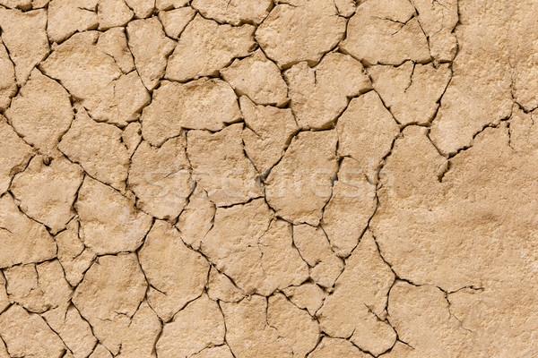 Cracks in the ground Stock photo © michaklootwijk