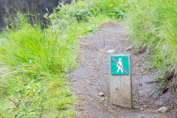 Forbidden to walk over here - Iceland Stock photo © michaklootwijk