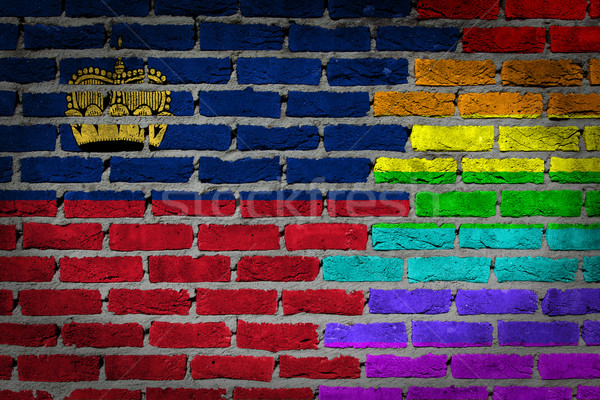 Dark brick wall - LGBT rights - Liechtenstein Stock photo © michaklootwijk