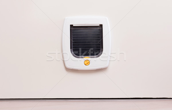 Inside view of a regular white cat flap, flap closed Stock photo © michaklootwijk