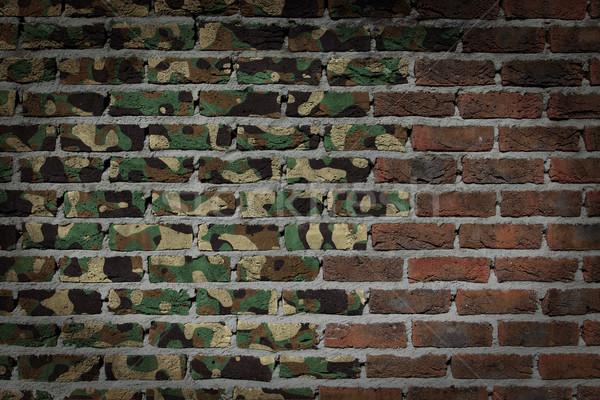 Dark brick wall - Army camouflage Stock photo © michaklootwijk