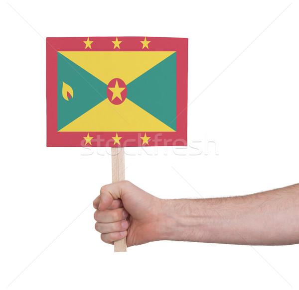 Kéz tart kicsi kártya zászló Grenada Stock fotó © michaklootwijk