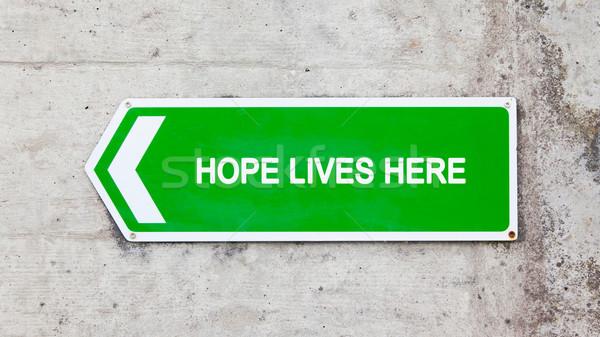Yeşil imzalamak umut burada beton duvar Stok fotoğraf © michaklootwijk