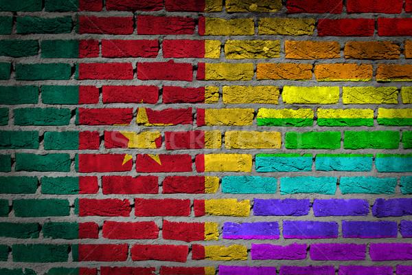 темно кирпичная стена правые Камерун текстуры флаг Сток-фото © michaklootwijk