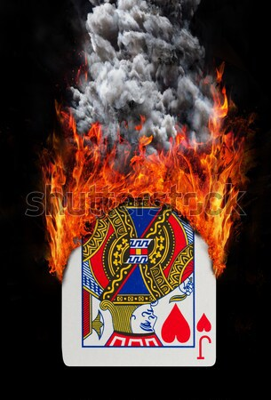 Vlag brandend Servië oorlog crisis brand Stockfoto © michaklootwijk