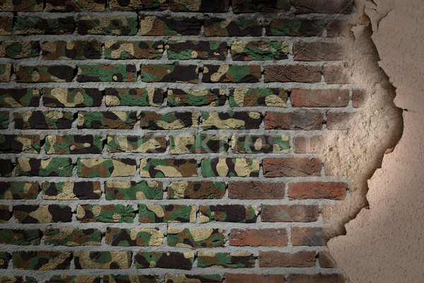 Dark brick wall with plaster - Army camouflage Stock photo © michaklootwijk