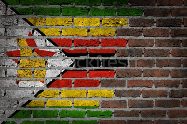 темно кирпичная стена Зимбабве текстуры флаг окрашенный Сток-фото © michaklootwijk