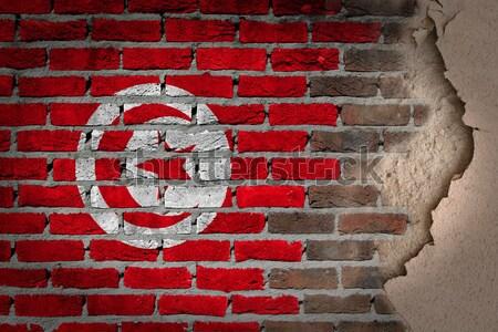 Sötét téglafal jogok Tunézia textúra zászló Stock fotó © michaklootwijk