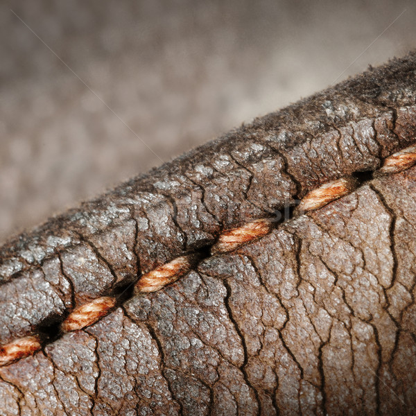 Close-up of old stiches in leather Stock photo © michaklootwijk