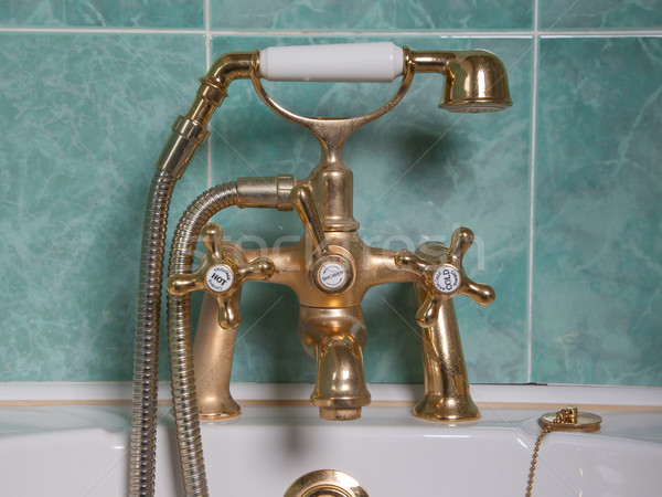 Klasszikus fürdőkád arany csap zöld fal Stock fotó © michaklootwijk