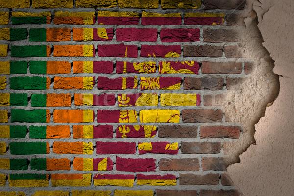 Sötét téglafal tapasz Sri Lanka textúra zászló Stock fotó © michaklootwijk