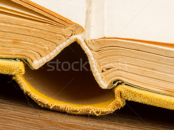 Old book fanned open Stock photo © michaklootwijk