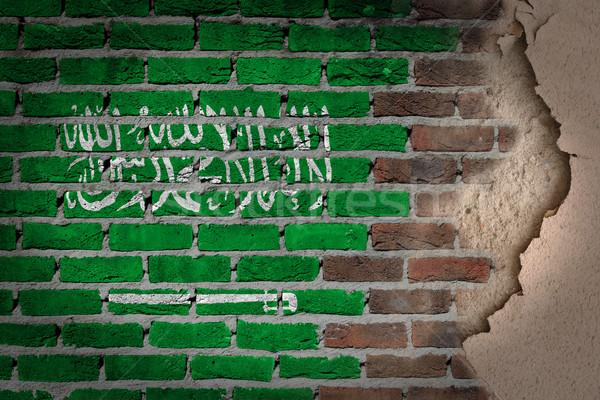 Escuro parede de tijolos gesso Arábia Saudita textura bandeira Foto stock © michaklootwijk