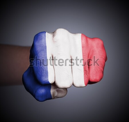 Frente vista puno banner Francia mano Foto stock © michaklootwijk