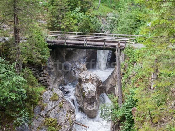 çağlayan orman su İsviçre yaz yeşil Stok fotoğraf © michaklootwijk