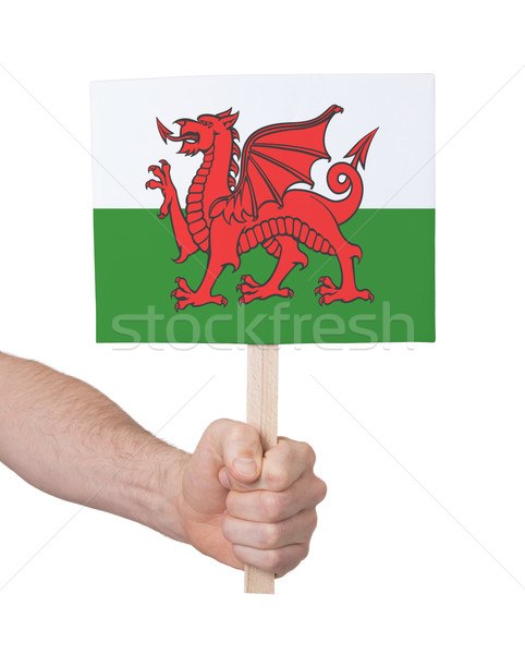 Hand holding small card - Flag of Wales Stock photo © michaklootwijk