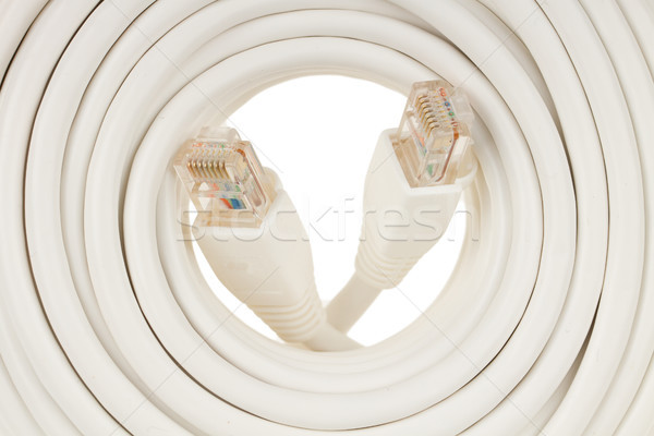 Close-up of a white RJ45 network plug Stock photo © michaklootwijk