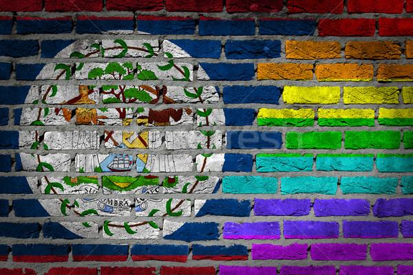 Sötét téglafal jogok Belize textúra zászló Stock fotó © michaklootwijk