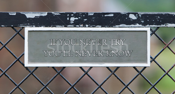 If you never try you will never know Stock photo © michaklootwijk