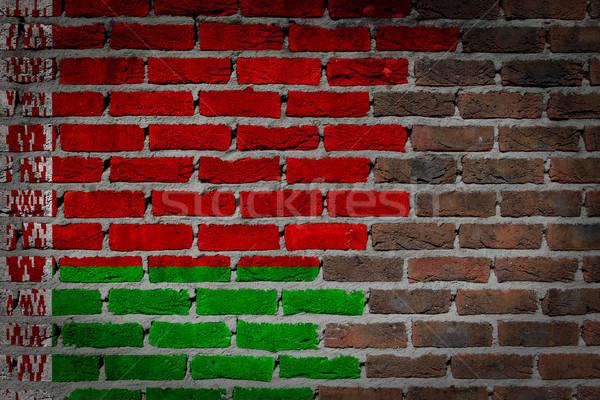 Oscuro pared de ladrillo Bielorrusia textura bandera pintado Foto stock © michaklootwijk