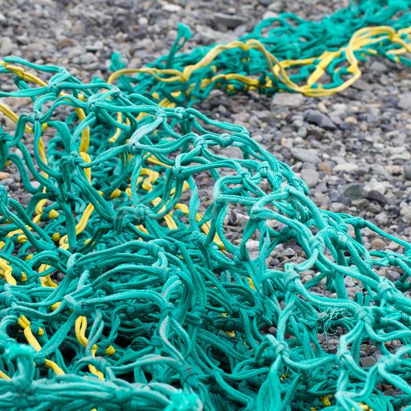 釣り ビーチ 準備 新しい 魚 作業 ストックフォト © michaklootwijk